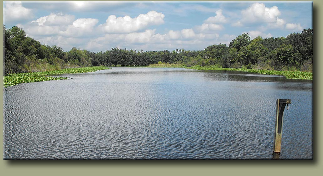 Al lopez park page 2 for Lopez lake fishing