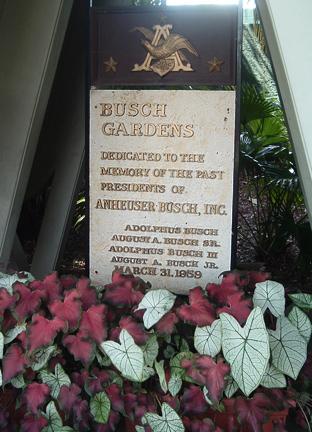 Busch Gardens page 2